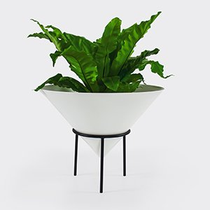 Nancy Planter